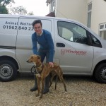 Dog Found in Winchester Reunited 1 year on