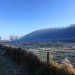 frost winter